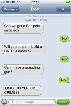 oh, batdog!
