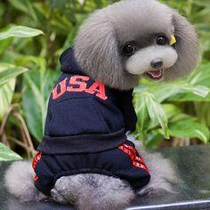 Fashion Lumious Lazy Bulldog Mens Flight Jacket Animal Printing Mens Winter Bomber Jacket Volume Large Jackets & Coats