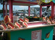 Port Lucaya Marketplace in Freeport, Grand Bahama Island Bahamas Vacation, Bahamas Cruise, Cruise Port, Outdoor Movie Screen, Paradise Island, Water Slides, Nassau, White Sand Beach, List
