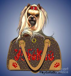 It's a Yorkie in a Bag Digital Art by Catia Cho - It's a Yorkie in a Bag Fine Art Prints and Posters for Sale