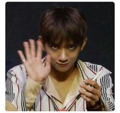 Joshua Meme, Seventeen Going Seventeen, Pledis Entertainment, Woozi, Kpop, Hip Hop, Entertaining, Wattpad, Memes