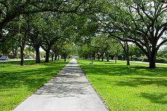 Discover the world through photos. Florida Keys, South Florida, Miami Springs, Sunshine State, Places To Visit, Sidewalk, Park, World