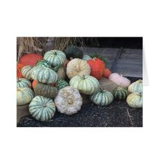 Colorful Pumpkins Card ($3.50) ❤ liked on Polyvore featuring home, home decor and stationery