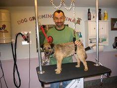 dog grooming hammock