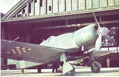 WWII. - 1942. - Croatia/ NDH - FIAT G.50 bis - Legione Aerea Croata (L.H.A.), pin by Paolo Marzioli