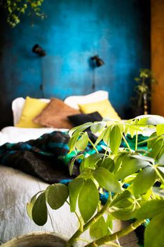 Botanical bedroom with colorful walls and industrial lighting - Renovation Botanical Bedroom, Mineral Paint, Industrial Lighting, Wall Colors, Chalk Paint, Plant Leaves, Walls, Colorful, Urban