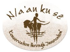 N/a'an ku sê Foundation -Carnivore Conservation  Volunteer for 3 months helping with the study and conservation of cheetahs. Yes. This will happen.