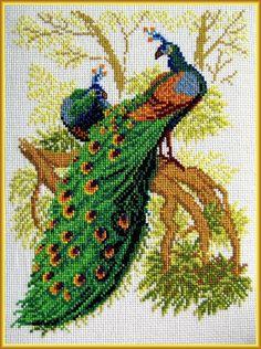 Gallery.ru / Фото #1 - 1 - Olsha Butterfly Cross Stitch, Cross Stitch Bird, Cross Stitch Designs, Cross Stitching, Cross Stitch Patterns, Cross Stitch Pictures, Needlepoint, Needlework, Embroidery