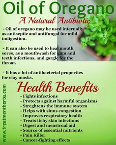The health benefits of oregano oil are countless. Have you ever wondered how one… Oregano Essential Oil, Essential Oil Uses, Young Living Essential Oils, Oregano Oil Benefits, Lemon Benefits, Health Benefits, Health Tips, Health Articles, Vitamins