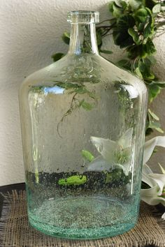 Clear Bubble Glass Jug Vase It would be cool to have larger jugs with willow branches in them at the entrances. (this particular one has a very narrow opening, however) Green Glass Bottles, Glass Jug, Lighted Wine Bottles, Antique Bottles, Vintage Bottles, Bottles And Jars, Antique Glass, Altered Bottles, Vintage Perfume