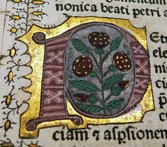 Biblia Latina 1477, illuminated initial    photo by vlasta2 on Flickr