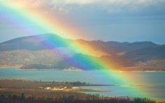 "IRIS (Ίρις): Greek name meaning ""rainbow."" In mythology, this is the name of a rainbow goddess. In use by the English as a feminine name, and by the Jews as a unisex name"