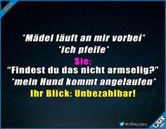 War wohl etwas voreilig. #fail #peinlich #Sprüche #Hund #Hunde #Humor