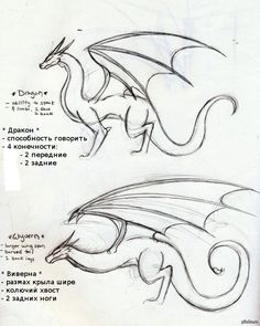 dragon drawings realistic drawing easy simple draw dragons cool pencil cartoon references winter fantasy