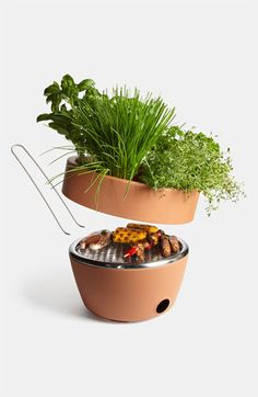 Great for small spaces: two-in-one planter/BBQ