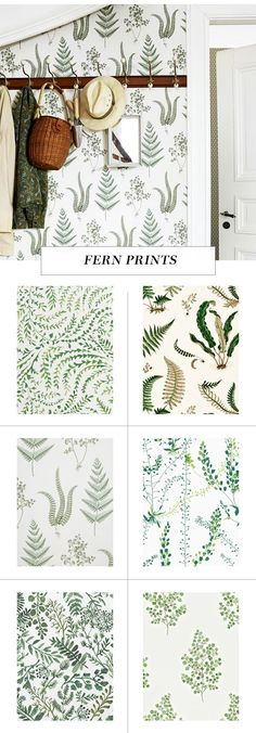 leaf print wallpaper roundup on coco kelley - fern prints