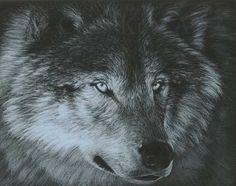 Wolf Art DARK WOLF by Carla Kurt Signed Wolf Print by CarlaKurtArt, $45.00