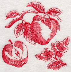 Apple Botanical Embroidered White Cotton Kitchen tea towel by StitchnJEmbroidery on Etsy