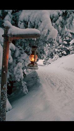 Light the way🕯️ through a Winter Wonderland ❄️ ❄️ ❄️ Erleuchten Sie den Weg durch ein Winterwunderland Winter Szenen, Winter Love, Winter Magic, Winter Light, Winter Season, Snow Light, Winter Walk, Winter Kids, Winter Travel