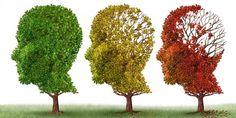 Mengupas fakta dibalik mitos tentang Alzheimer | id Kesehatan