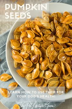 Nuts and seeds make great snacks because they offer healthy fats, which are super satiating. But they also contain protein, which works to keep hunger pangs at bay. Take ever-popular and versatile pumpkin seeds, for example. One ounce contains 8 grams of Protein Rich Foods, Healthy Fats, Healthy Eating, Roasted Pumpkin Seeds, Roast Pumpkin, Dog Treat Recipes, Dog Food Recipes, Healthy Pumpkin, Nutritional Supplements