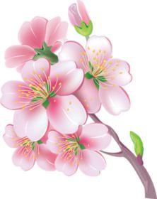 Tubes Fleurs - Le petit grenier d' Emy Rock Flowers, Exotic Flowers, Large Flowers, Pretty Flowers, Art Floral, Flower Designs For Painting, Cherry Blossom Art, Cartoon Flowers, Alcohol Ink Crafts
