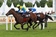 Protectionist (GER) 2010 B.h. (Monsun (GER)-Patineuse (IRE) by Peintre Celebre (USA) 1st Prix Kergorlay (FR-G2,3000m,Deauville)