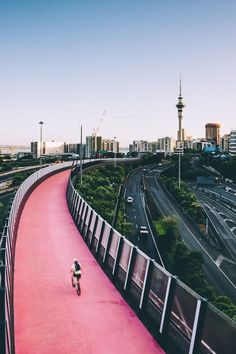 Looking for fun things to do in Auckland? Tap this pin to discover incredible hikes in Auckland, New Zealand! New Zealand Cities, New Zealand Travel, New Zealand Image, Formations Rocheuses, North Island New Zealand, South Island, Moving To New Zealand, New Zealand Itinerary, Stations De Ski