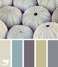 Palette sala: verde, cinza, areia, roxo, azul