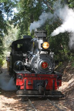 While staying and Chaminade Resort & Spa you may have the opportunity to travel off property....check out Roaring Camp Railroads for steam or diesel train rides through the redwoods.... www.roaringcamp.com