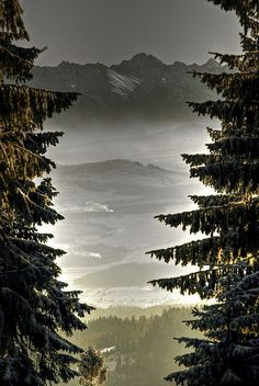 Tatra Mountains and a valley from the trail to Turbacz in Gorce Mountain Range, Poland