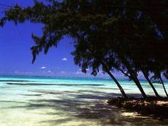 Things to do in Grand Cayman, Cayman Islands | Experience Caribbean