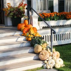 Next fall....love the cluster of gourds and pumpkins.