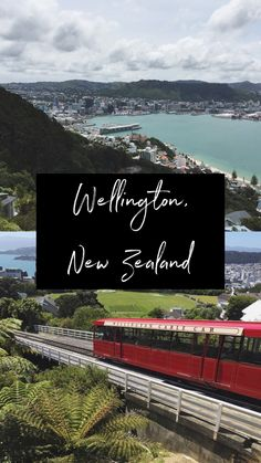 Wellington City Guide: All the best things to do in Wellington, New Zealand, plus where to eat, get coffee, shop, stay, and everything you need to plan your trip! #wellington #newzealand