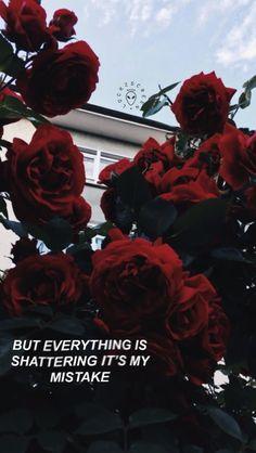Aber alles zerbricht, es ist mein Fehler.