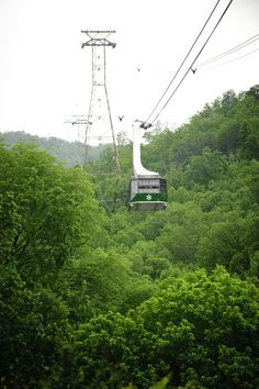 Welcome to Ober Gatlinburg. Learn more about skiing, attractions and the amusement park. Located in Gatlinburg, Tennessee, in the Great Smoky Mountains. Smoky Mountains Tennessee, Great Smoky Mountains, Ober Gatlinburg, Amusement Park, Places Ive Been, Skiing, Things To Do, Vacation, Colors