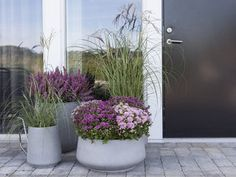 Bilderesultat for plante i krukker sommer Garden Planter Boxes, Small Garden Design, Balcony Garden, Front Yard Landscaping, Garden Inspiration, Beautiful Gardens, Container Gardening, Flower Pots, Outdoor Gardens