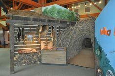 Conservation Nature Center in Cape Girardeau, Missouri #VisitCape