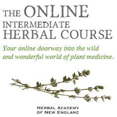Learn-herbalism-Intermediate-Course-
