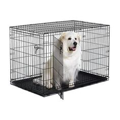 "MidWest iCrate Double Door Folding Metal Dog Crate w/ Divider Panel Floor Protecting ""Roller"" Feet & Leak-Proof Plastic Tray; x x Inches XL Dog Breed Extra Large Dog Crate, Large Dogs, Small Dogs, Puppies Tips, Dogs And Puppies, Xxxl Dog Crate, Dog Travel Crate, Car Travel"