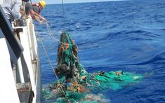 The Great Pacific Garbage Patch now contains 1.