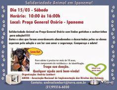 Bonde da Bardot: RJ: CAMPANHA DE ADOÇÃO DE ANIMAIS NA PRAÇA GENERAL...