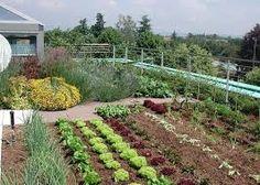 progetto giardino con muretto in pietra - cerca con google ... - Piccolo Giardino In Casa