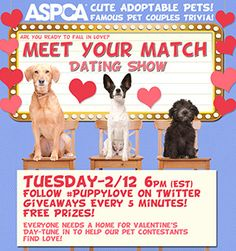 You're Invited to Our #PuppyLove Dating Show and Trivia Party!