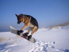 Snowboarding.. Everyone's favourite!