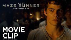"The Maze Runner | ""Fight"" Clip [HD] | 20th Century FOX"
