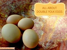 Fresh Eggs Daily®: Double Yolkers - What Causes a Double-Yolk Chicken Egg?
