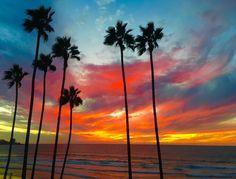 Most Beautiful, Beautiful Pictures, Gateway Arch, La Jolla, Landscape Art, Wind Turbine, Google Images, San Diego, Backyard