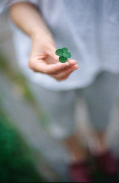 Luck is like a four-leaf clover: when you're searching for it, it is impossible to find; when you happen upon it, it is more obvious than anything else. Hope you had a terrific day, friends. Hello March, Irish Eyes Are Smiling, Irish Cottage, 4 Leaves, Trigger Happy Havoc, Happy St Patricks Day, Luck Of The Irish, Four Leaf Clover, Just For You
