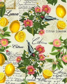 Lemon Background, Vintage Sweets, Lemon Kitchen Decor, Lemon Blossoms, Bird Quilt, Lemon Print, Colouring Techniques, For Love And Lemons, Floral Fabric